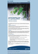 Knotweed – New Japanese knotweed policy
